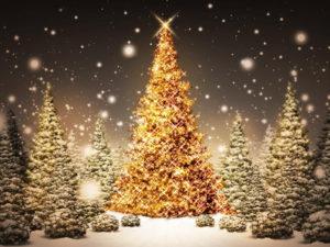 Nastrojowych i Radosnych Świąt Bożego Narodzenia oraz samych szczęśliwych zdarzeń w nadchodzącym Nowym Roku życzy Adwokat Wojciech Kała